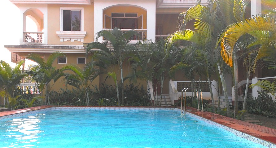 Pool by our house in Goa, India - What Is India Like?
