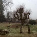Snow in Burgundy - France