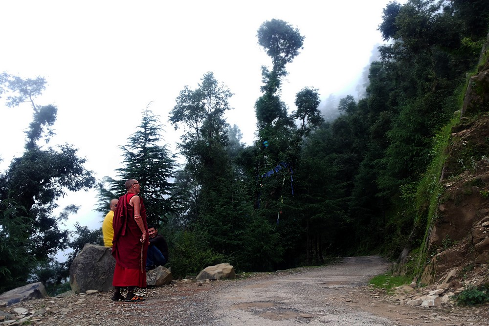 Buddhist monk in Dharamkot, India - Moving to India. Story of Agate