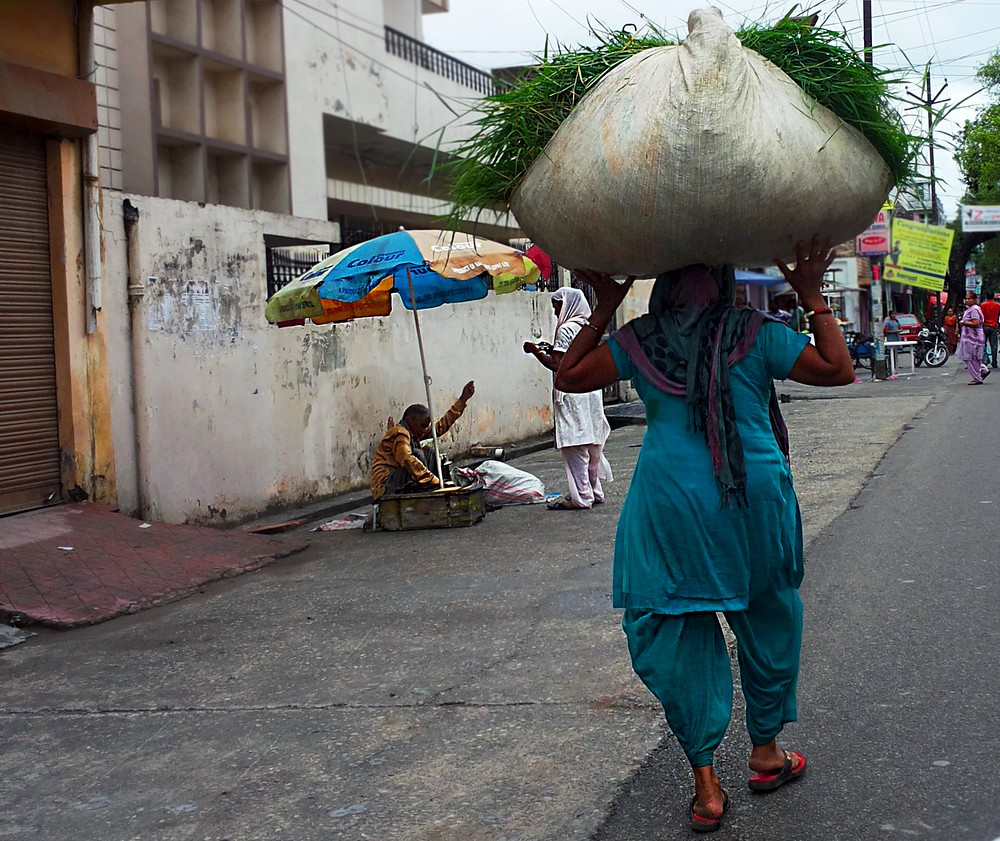 Lady Carrying Hay, Muzahharnagar - Moving to India. Story of Agate