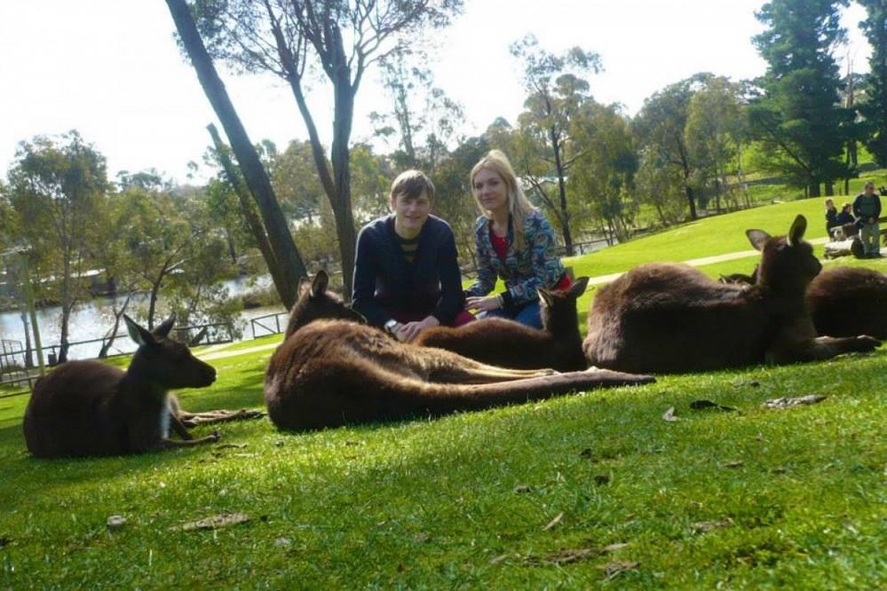 travelling weasels - kangaroos - house sitting
