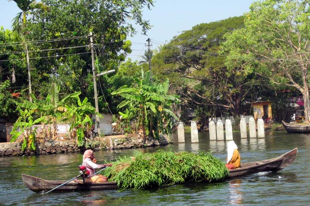 5 Kerala backwaters tour