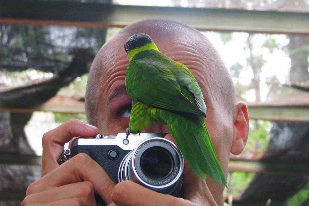 Parrot sitting on camera in Kuala Lumpur Bird park