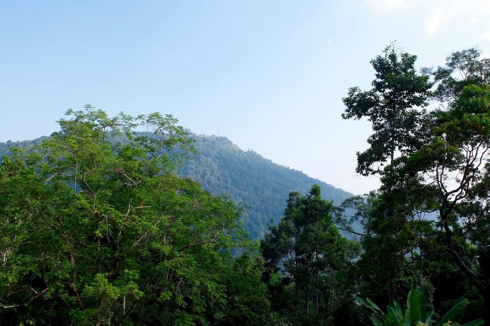 Green Langkawi island