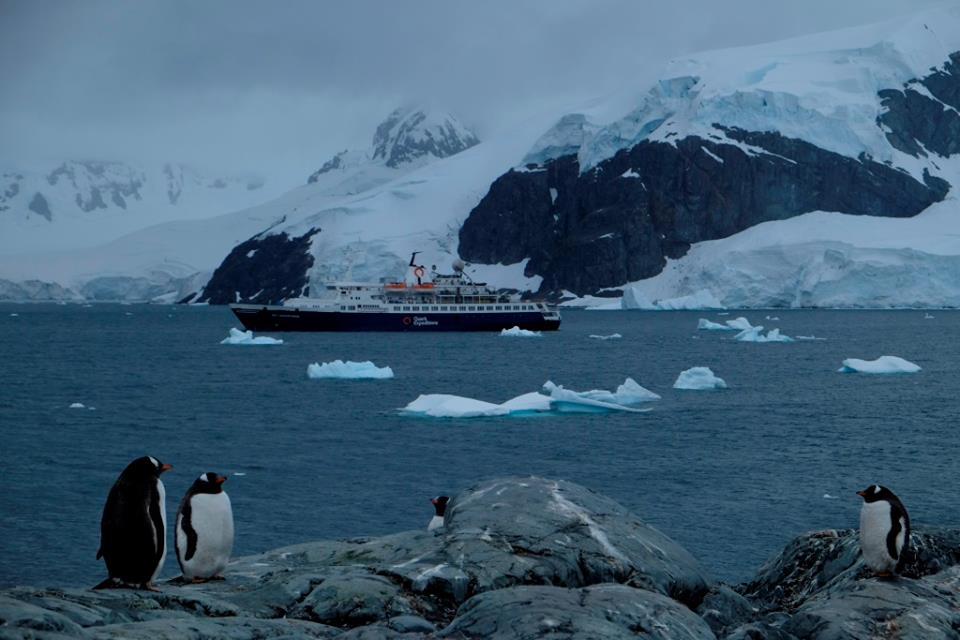 Penguins and the ship in distance - Why go to Antarctica