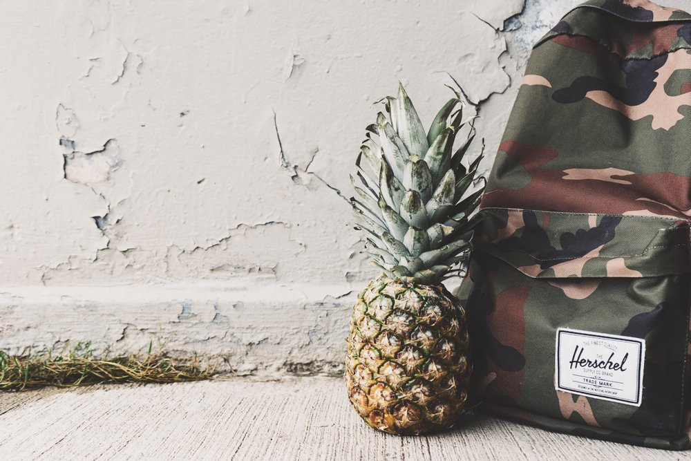 Backpack and pineapple - Best Carry on Backpacks