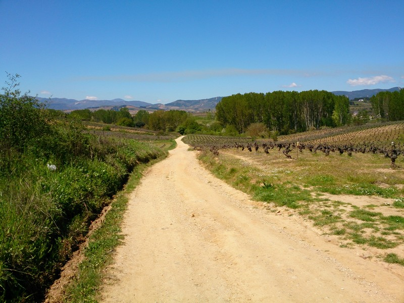 A gravel road in Spain