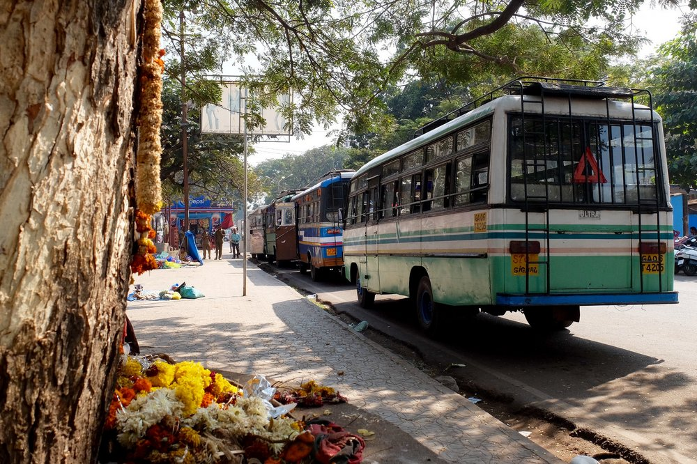 Local buses in Goa, India