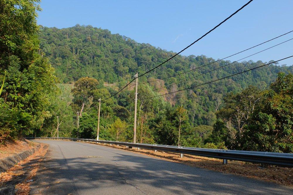 A road to the peak of Gunung Raya - Langkawi