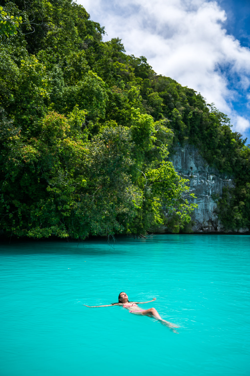 Swimming in the Milky Way - Things to Do in Palau