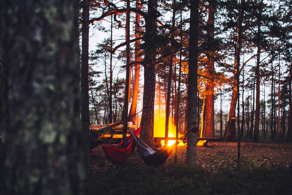 Camping hammocks in the forest - Top Things to Do in Latvia