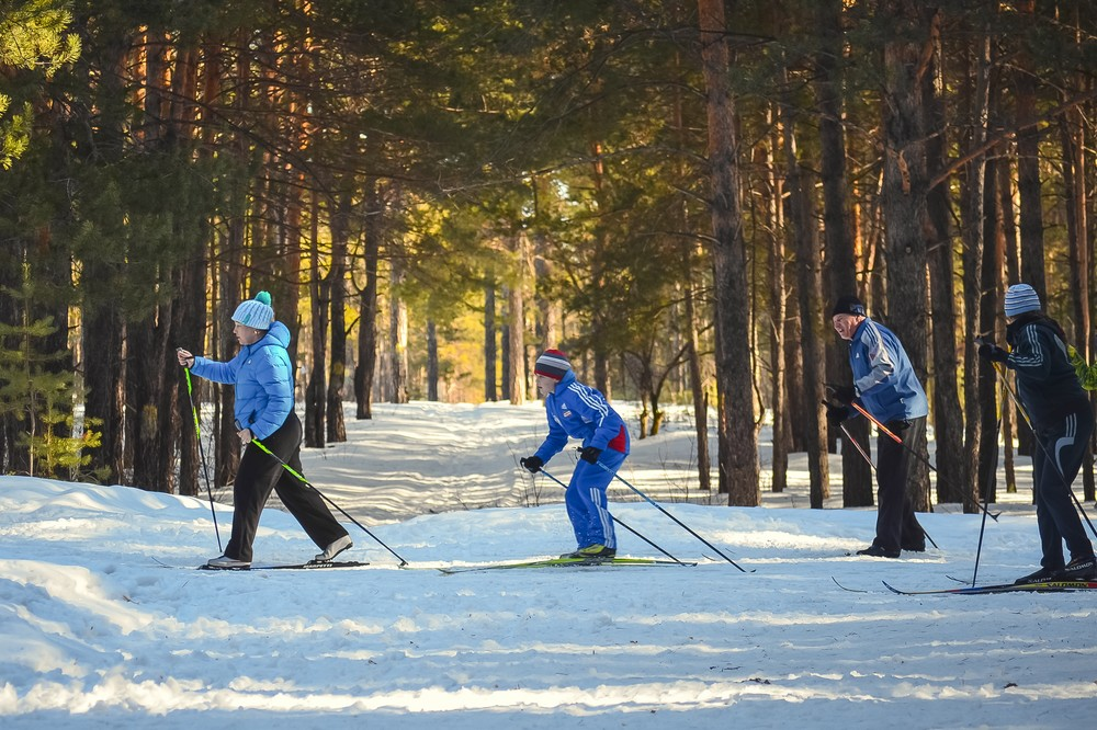 Cross-Country Skiing - Top Things to Do in Latvia