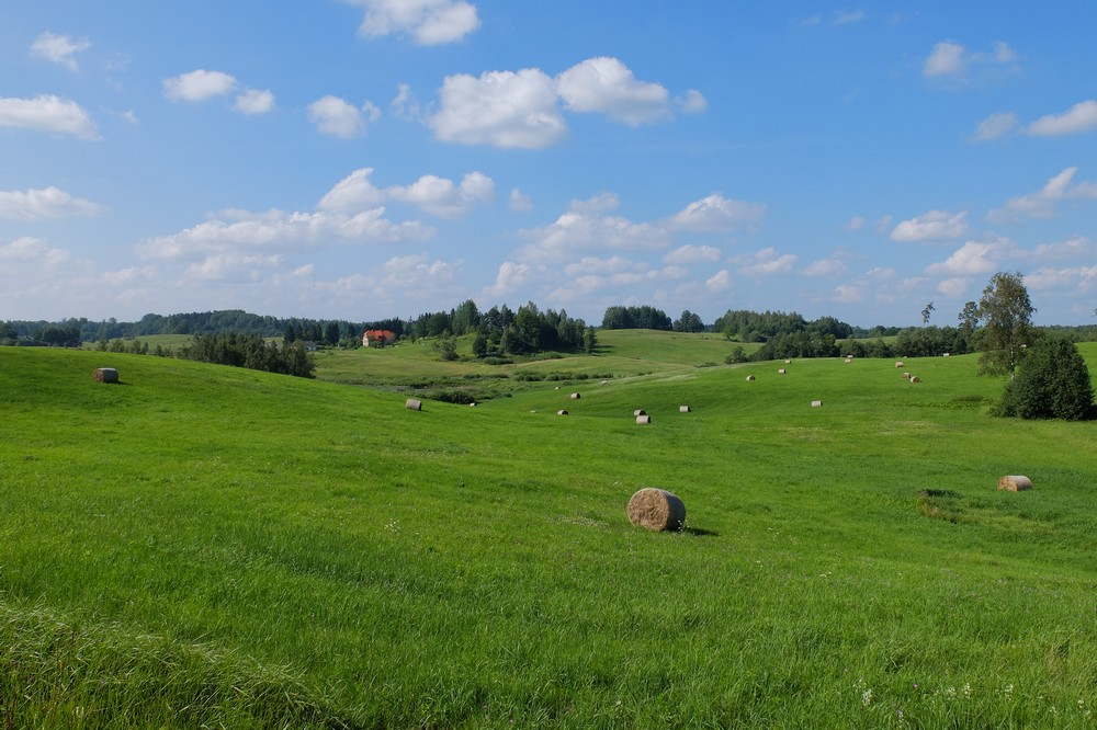 Fields in Latgale - Top Things to Do in Latvia