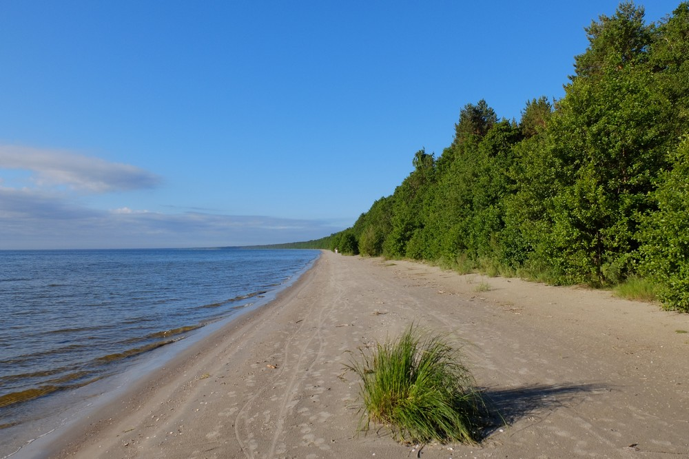 Go on a Coastal Hike - Top Things to Do in Latvia