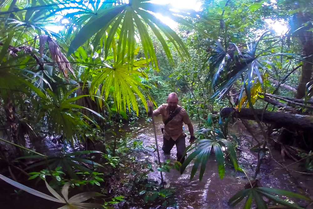 Raimonds in the jungle - Nomadic Traveler Ray Gudrups