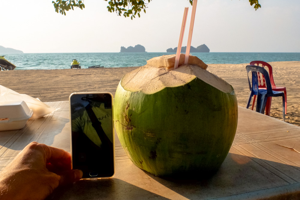 Huge coconut on the Tanjung Rhu beach in Langkawi - Best Things to Do in Langkawi