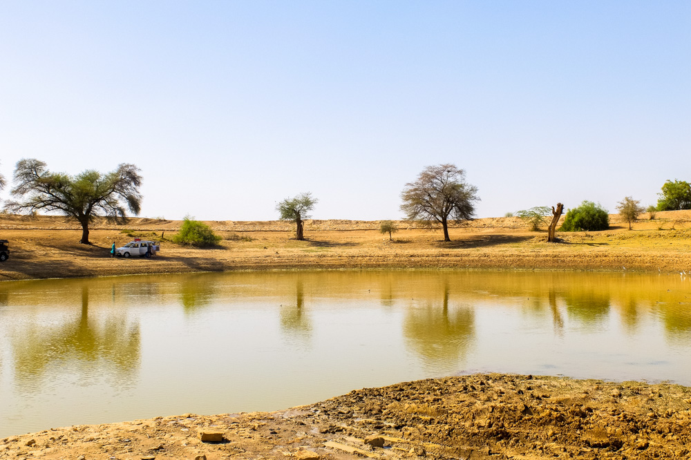 A lake outside of Jaisalmer - 4 Weeks in India