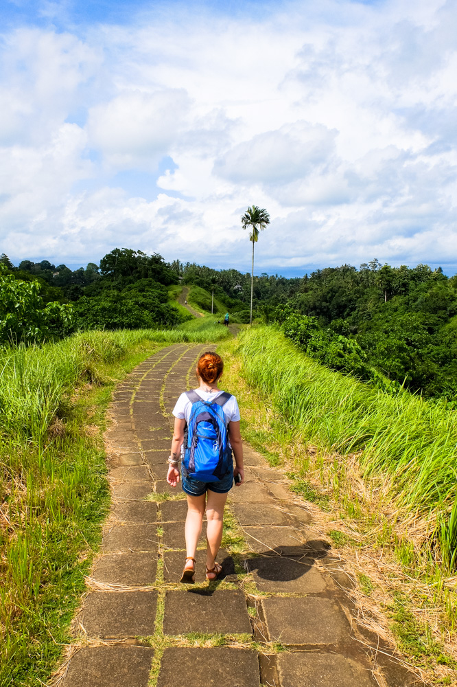 Campuhan Ridge Walk - Best Things to Do in Bali