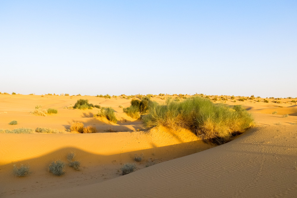 Sand dunes outside Jaisalmer - 4 Weeks in India