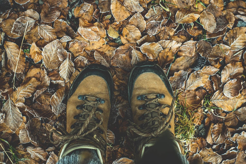 Hiking Shoes and Autumn Leaves