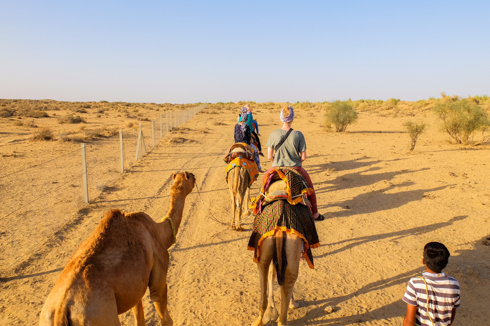 People on the camels riding next to the fence - Our Jaisalmer Desert Safari Experience