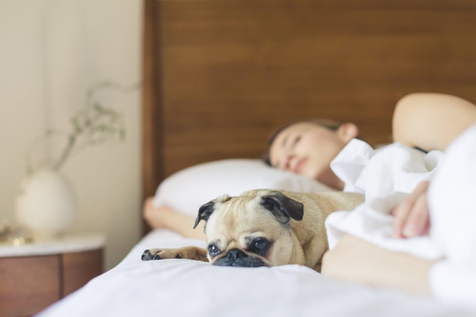 Woman sleeping - Strategies to Reset Your Sleep Schedule After Traveling